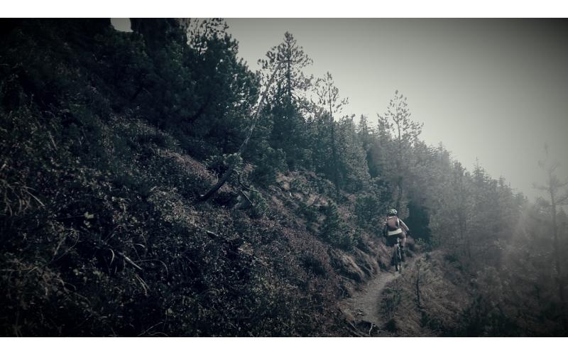 Wanderweg zwischen Jenisberg und Schönboden 1