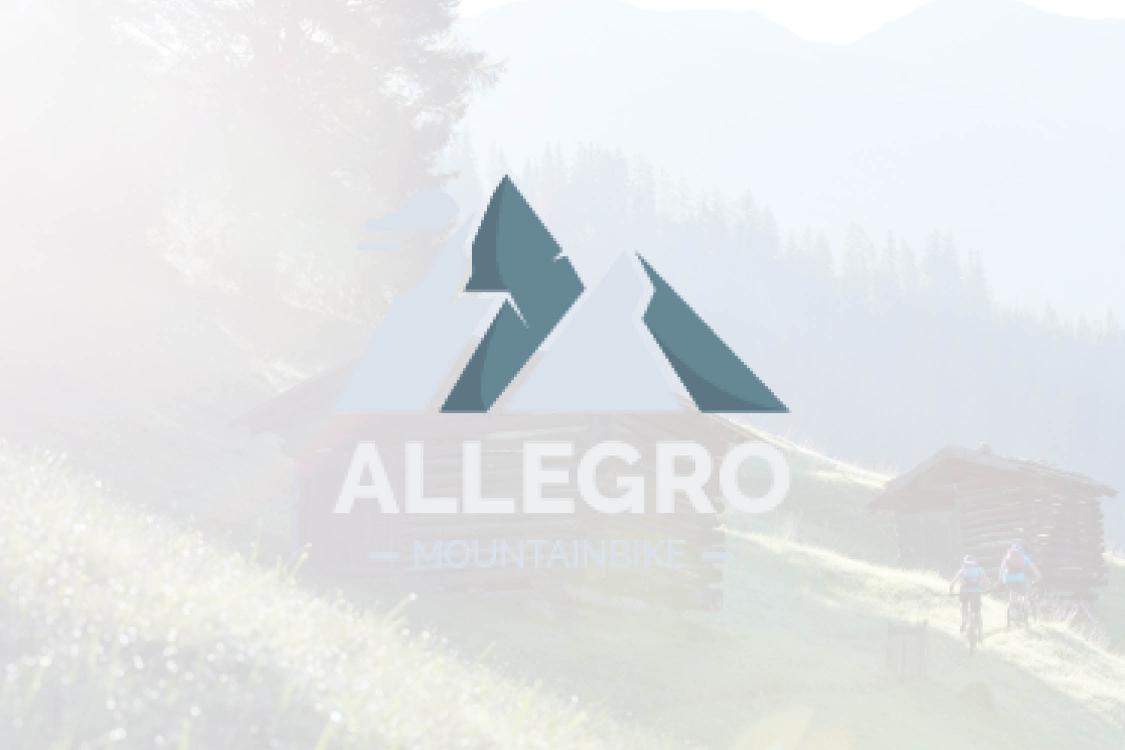 Allegra Mountainbike