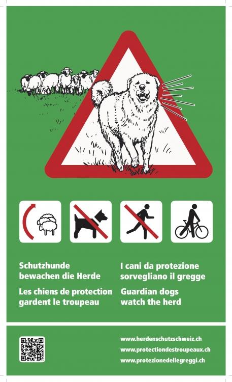 Infotafel Herdenschutzhunde