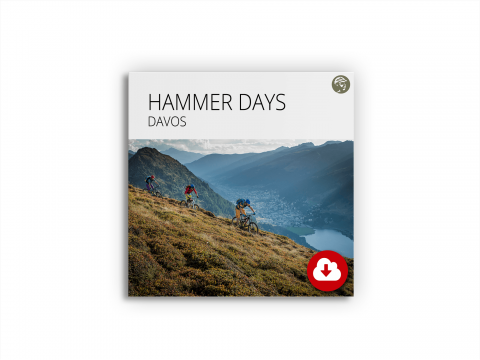 Datenpackage Hammer Days Davos
