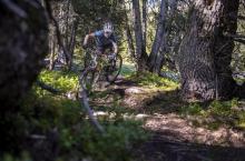 Nagens-Trail