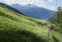Trail in Passugg mit Blick auf Chur
