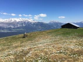 Dutjer Alp Tour