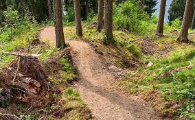 Val Lumnezia saniert Trails 2019