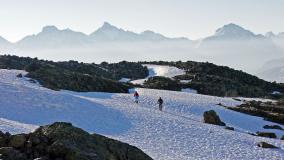 Schneefeld Suvrettapass